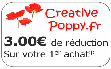 3.00 de rduction sur votre premire commande